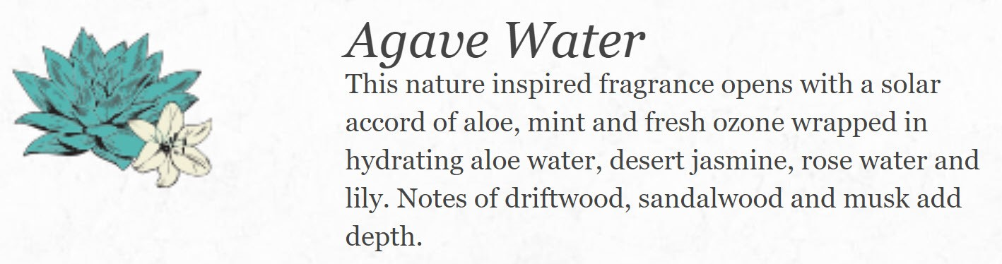 Agave Water Home Care Collection
